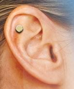 China Quit Smoking - Auricular Magnet Therapy wholesale