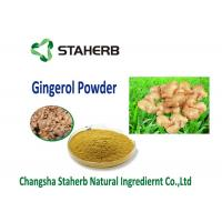 China organic ginger extract Vegetable Extract Powder Food addtive water soluble dry ginger powder wholesale