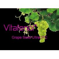 China Ultra OPC Oligomeric Proanthocyanidins Pure Grapeseed Extract High ORAC Value wholesale