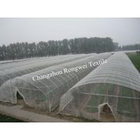 China UV Stabilized 50 Gsm Transparent Hail Guard Netting To Protect Fruits on sale