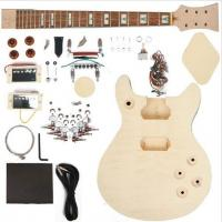 China Double Cutaway 22 Fret DIY Electric Guitar Kits With 2 Humbucker AG-DU1 wholesale