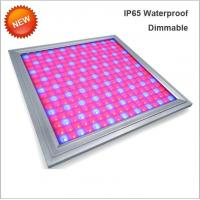 China 110V Led Full Spectrum Grow Lights , Led Flowering Grow Lights Energy Saving wholesale