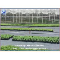 China Ground Cover Net Commercial Grade 880 Sq Ft Roll Landscape & Erosion Control Fabric wholesale
