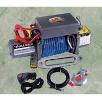 China D Series Electric Winch DSIC12000W wholesale