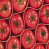 China can tomato ketchup wholesale
