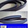 China PH V-Ribbed Timing Belt PH1217 PH1278 PH1382 PH1476 PH1517 PH1646 PH1PH1725 PH1832 PH1942 PH2196 PH2666 wholesale