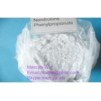China Anabolic Oral Androl Bulking Cycle Steroids , Oxymetholone Bodybuilding Building Powder wholesale
