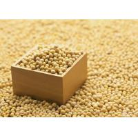 China Organic Soybean Extract Powder 40% Isoflavones to improve brain function and dementia wholesale