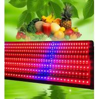 China 120 Degree LED Weed Growing Lights T8 18w , Grow Light Strips Bar Eco Friendly wholesale