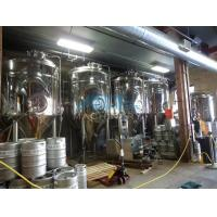 China Hotel / Barbecue / Resturant / Ginshop Beer Brewing System 500 Liter Brewery Equipment Complete Brewing System wholesale
