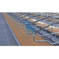 China Double Position Locking Feed Barriers Cattle Feeding Equipment With 6pcs Shackle wholesale