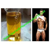 Buy cheap Sustanon 250 mixed 250mg / ml Injectable Anabolic Steroids , Injectable Testosterone Steroids product