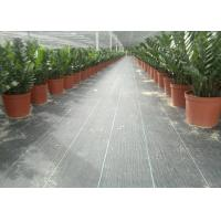 China Geosynthetic Fabric PP 130g Black Color 1m Width Weed Barrier For Anti Grass wholesale