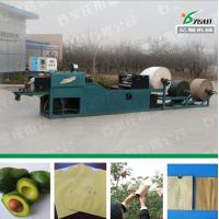China Paper bags machinery factory price on sale