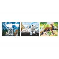 Quality Wild Animal Flip Effect 3D Lenticular Printing Services PET/PP Lenticular Picture for sale