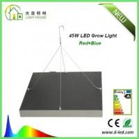 China Energy Saving Waterproof LED Plant Grow Lights / Hydroponic LED Grow Lights 3W - 120W wholesale
