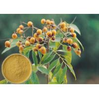 China Yellow Brown Powder Soapberry Extract Cosmetic Grade For Bath Cream / Shampoo wholesale