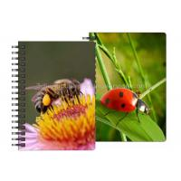 China 0.6mm PET Material 3D Lenticular Notebook For Office Stationery wholesale