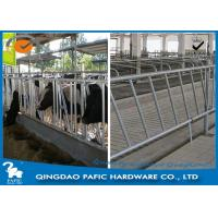 China Individually Feeding Dairy Cow Headlock Stockade Plate Length 8 Meter wholesale