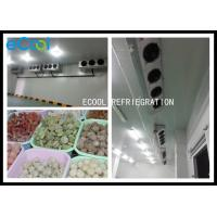 China Multipurpose Frozen Food Storage Warehouse Electrical Control System wholesale