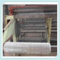 "China 1/2 3/4 5/8 small hole chicken wire mesh/hexagonal wire mesh/ 1"" Hex 24"" x 150"" 20 Gauge Electric Chicken  fence wholesale"