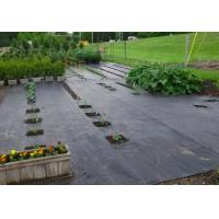 China 100% Polypropylene Agriculture Non Woven Fabric Weed Control Ground Cover Net Mesh Cloth on sale