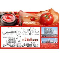 China SS304 Small Scale Ketchup Tomato Paste Production Line Customized Size Easy Operation on sale