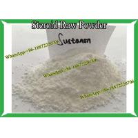 Injectable Steroid Testosterone Sustanon 250 / Sust 250 Muti Ester Raw Powder For Bodybuilding