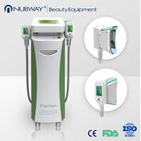 China CRYOLIPOLYSIS VACUUM laser,with 3 cryo treatment handles,for fat melt and body shaping wholesale