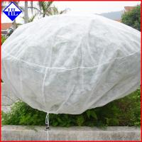 China Spunbonded Non Woven Weed Control Fabric Mat For Plant Freeze / Frost Protection on sale