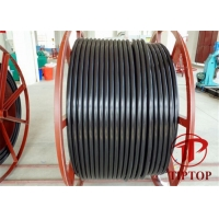 China ASTM A312 Ss Welded PVC Jacket Multi Core Coiled Tubing on sale