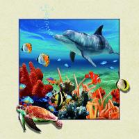 China Home Wall Decoration Custom Lenticular Printing 5d Depth 20 x 20cm Dolphin Poster wholesale