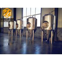 China Pub Brewery Industrial Fermentation Equipment 1000L Raker And Agitator VFD wholesale