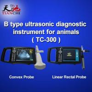 China TIANCHI Pregnancy Test Veterinary B Ultrasound TC-300 China Manufacturer on sale