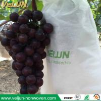 China Nonwoven grape bag fruit bag non-woven fabric nonwoven banana bag fruit protection bag wholesale
