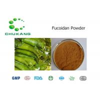 China ISO Passed Organic Kelp Powder / Kelp Extract CAS 9072 19 9 With Two Years Shelf Life wholesale