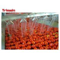 China 10t / H Tomato Sauce Manufacturing Plant , Tomato Ketchup Making Machine 220V/380V on sale