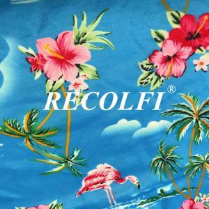 China Digital Print Ribbed Swimwear Fabric Repreve Nylon And ROICA Spandex Fiber wholesale
