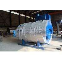 Quality Stainless Steel Gas Fired Steam Boiler Multiple Protection Industrial Natural Gas Boiler for sale
