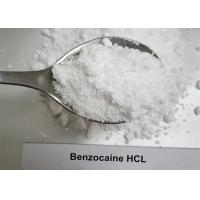 China Local Anesthetic Steroids Raw Powder , Pure Benzocaine HCL Powder CAS 23239-88-5 wholesale