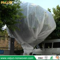 China Nonwoven tree protection cover, tree bag/ nonwoven tree protection bag, UV resisted tree ocver wholesale