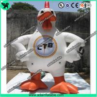 China Event Inflatable Rooster,Inflatable Rooster Cartoon,Inflatable Rooster Costume wholesale