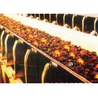Quality Custom Heat Resistant Conveyor Belt With Polyester Canvas And Rubber Cover for sale