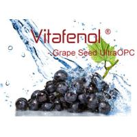 China Grape Seed UltrOPC, High Content Oligomers (Dimers + Trimers + Tetramers ≥ 55% ), High ORAC value (≥ 25,000 µmole TE/g) wholesale