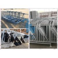 China Q235 Material Cow Headlock And Feed Panel For Livestock Plant wholesale