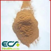 China Brown Premium Health Supplements Artichoke Extract Powder For Protect Heart Blood wholesale