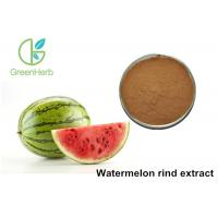 Non - Irradiated Plant Extract Powder Watermelon Rind Extract Powder