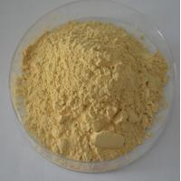 China 100% natural Panax Ginseng Extract Ginsenosides 20% -80% UV,CAS Number :41753-43-9 on sale