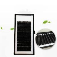 China wholesale lashes private label korean pbt silk individual eyelash extensions manufacturer wholesale