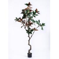 China Lovely  Artificial Plants And Trees Magnolia Tree Regal In Stature Command Attention wholesale